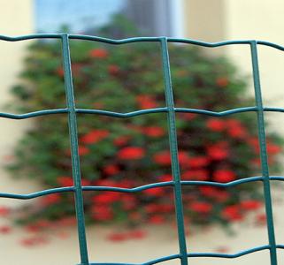 Euro Fence oldalkerítés
