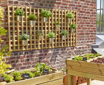 Növényfuttatás falra