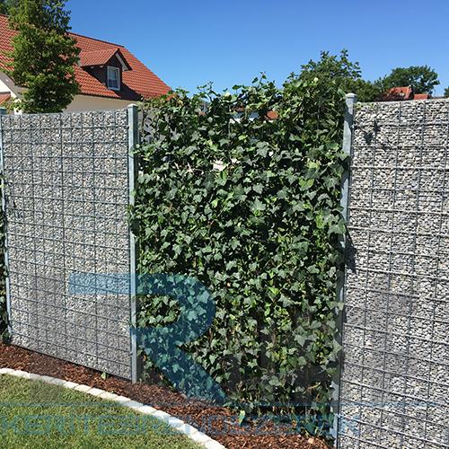 Gabion keskeny kerítés