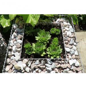 Gabion növényágyások-1