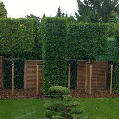 Badacsony fa kerítés