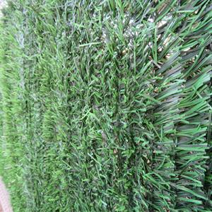 Greenstar 2x3m tarka műsövény (Cn)