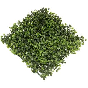 Buxus Panel 50x50cm Zöld